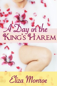 a-day-in-the-kings-harem