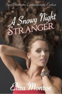 a-snowy-night-stranger