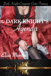 the-dark-knights-agenda